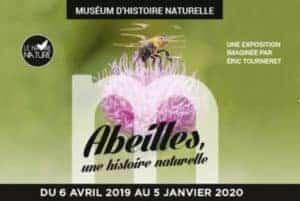 abeilles Le Havre