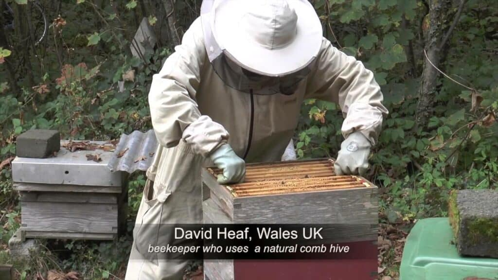David Heaf et ses ruches Warré